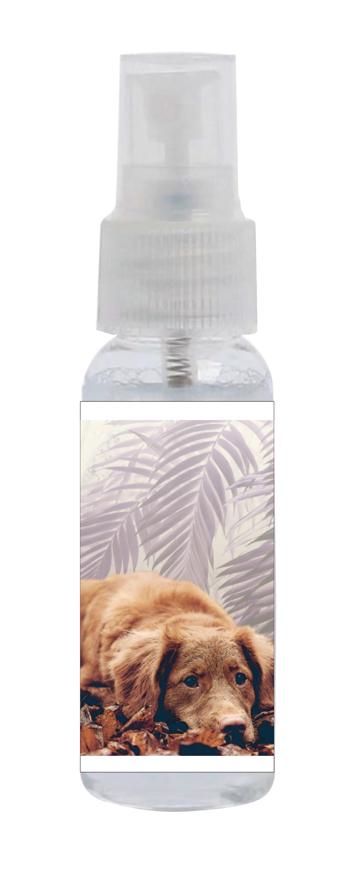 """Picture of Sprayclean 25, """"Hund"""", geruchsneutral, 48 Sprühflaschen à 30 ml"""